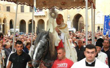 Brindisi, la processione del cavallo parato