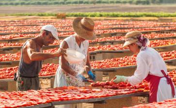 Pomodori secchi del Salento: l'estate non finisce mai