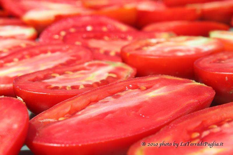 Pomodori maturi pronti a diventare secchi