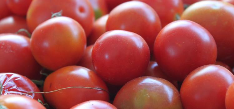 Ricetta della salsa di pomodoro pugliese
