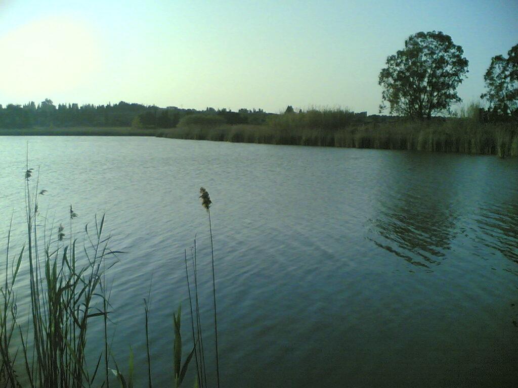 i laghi alimini - Laterradipuglia.it