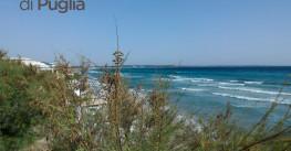 La Puglia rimane la Regina dell'Estate 2015