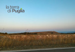 10 luoghi splendidi da visitare in Puglia