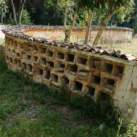 apiari in puglia - La Terra di Puglia