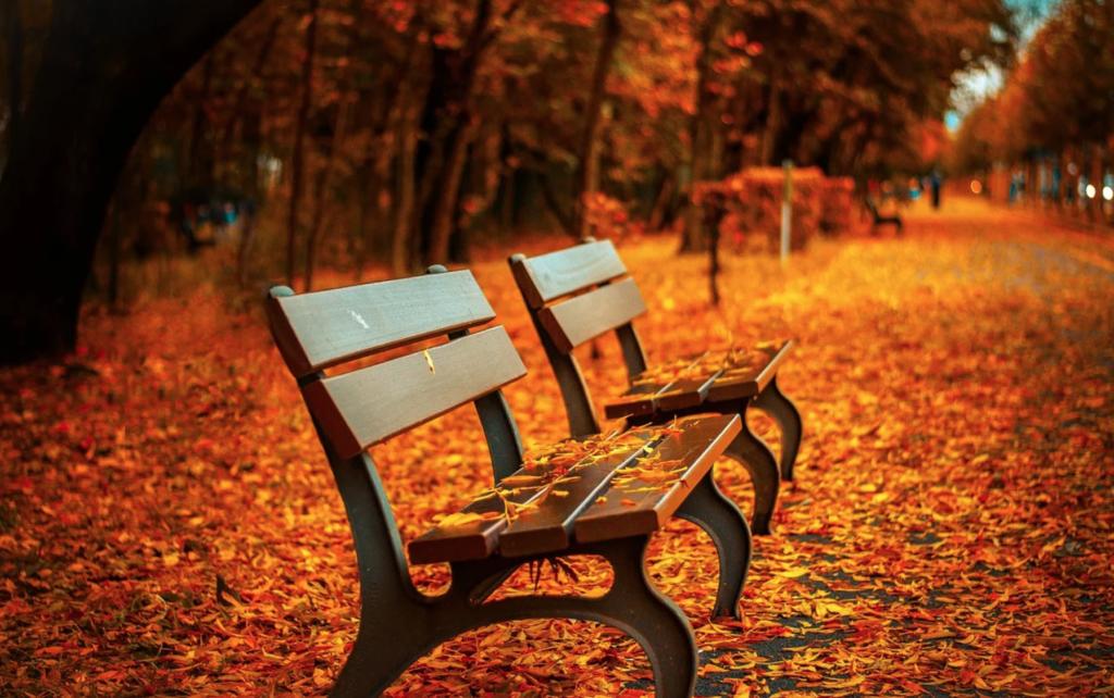 vacanze in puglia in ottobre - Laterradipuglia.it