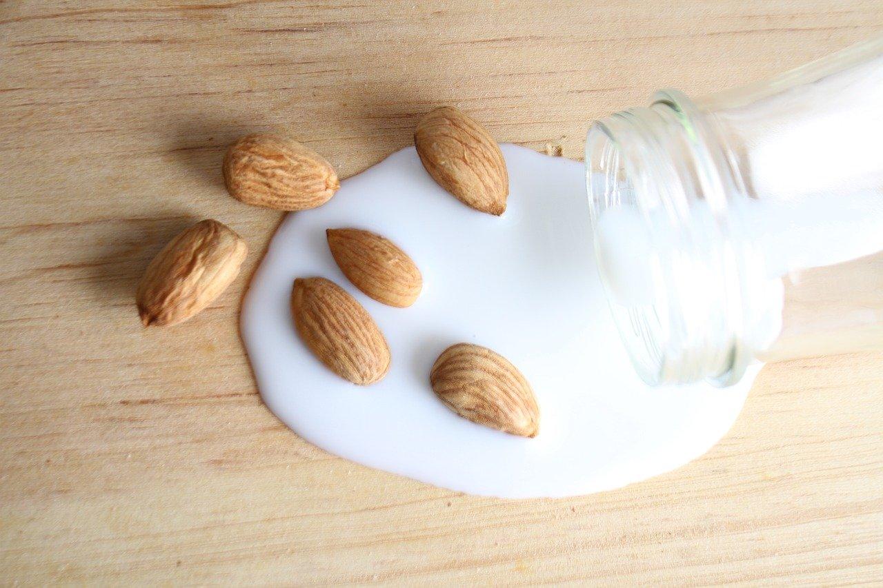 latte di mandorla – Laterradipuglia