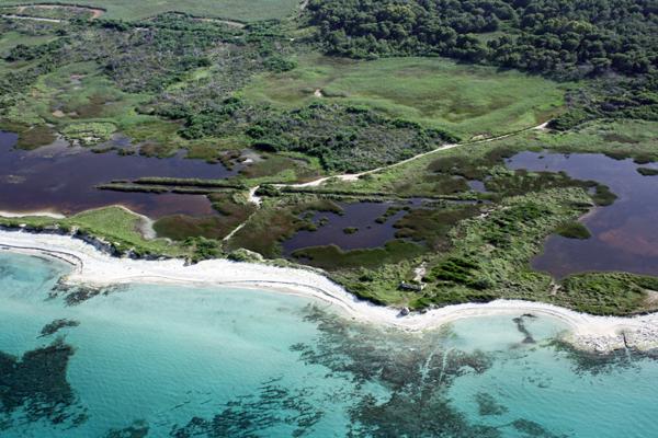 aree-naturali-protette-provincia-di-lecce-le-cesine