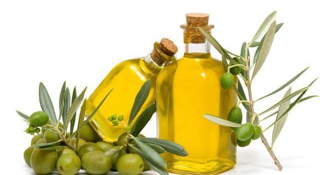 La Puglia si prepara per l'evento Olio Capitale