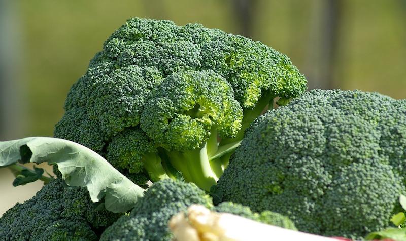 broccolo-antitumorale