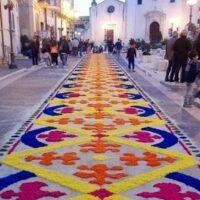 candela in fiore - La terra di Puglia.it
