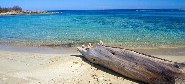 carovigno_torre_guaceto_spiaggia_ph_riserva_di_torre_guaceto_1497430815856