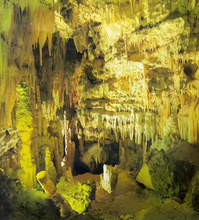 Tour nelle grotte di Castellana