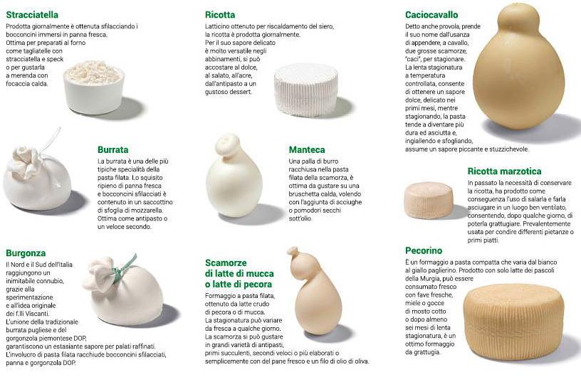 catalogo-latticini-formaggi