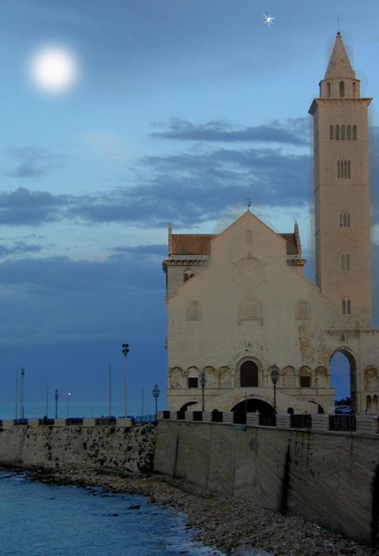 cattedrale Trani in notturna
