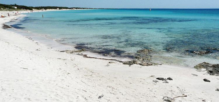 Gli eventi del 23 agosto in Puglia