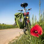 Come arrivare in Puglia in bici
