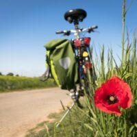 Come arrivare in Puglia in bici - Laterradipuglia.it