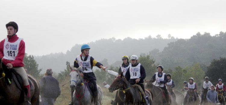 Endurance equestre, alla tappa di Corato ci siamo anche noi