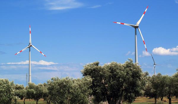 Parco eolico a Rauccio: gli enti locali non lo vogliono!