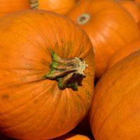 festa-della-zucca-e-sapori-d-autunno-ceglie-messapica
