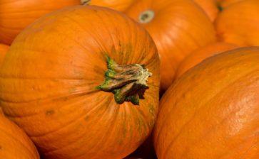 Festa della zucca e sapori d'autunno a Ceglie Messapica