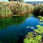 I fiumi della Puglia