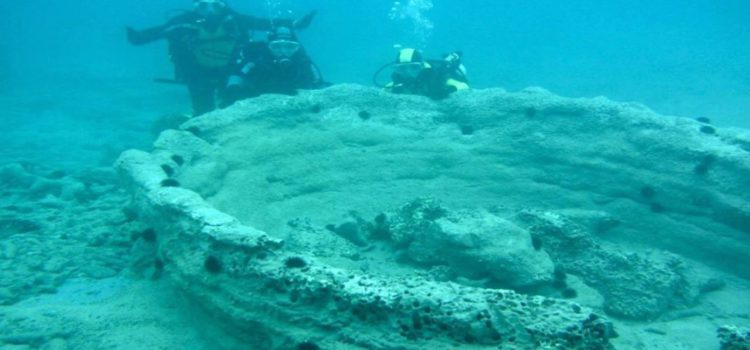 La foresta pietrificata di Puglia, un tesoro sommerso da scoprire