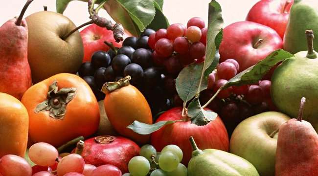 fruit-logistica-berlino-puglia