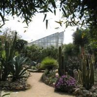 giardino-botanico-giuggianello-1