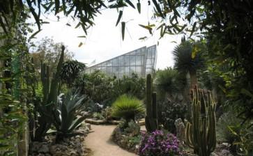 Alla scoperta del Giardino botanico di Giuggianello