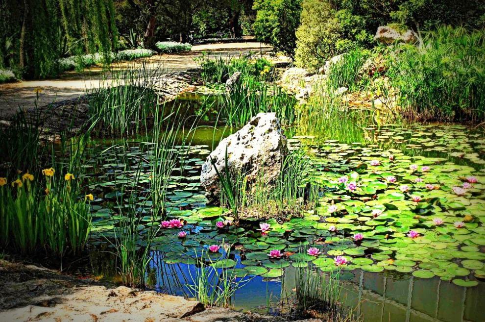 giardino-botanico-giuggianello-7