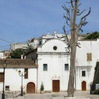 l'albero di ischitella - Laterradipuglia.it