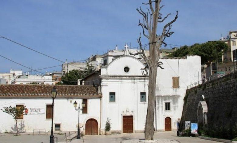 ischitella albero – Laterradipuglia.it