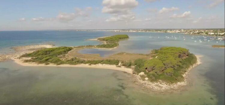 L'isola dei Conigli a Porto Cesareo, cos'è e perché si chiama così
