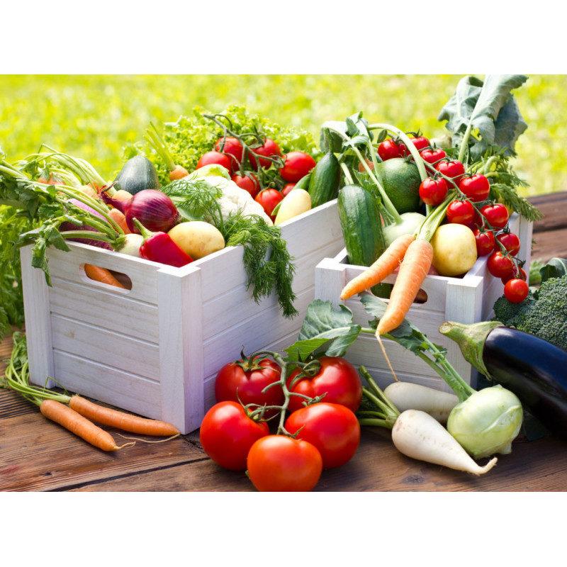 la-cassetta-del-contadino-verdura-fresca-di-stagione-1