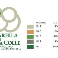 mozzarella gioia del colle dop - La Terra Di Puglia