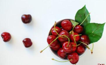 Il moscerino Suzukii mette in pericolo ciliegie, fragole ed uva pugliese