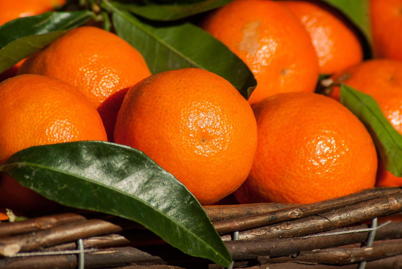 marmellata-mandarini