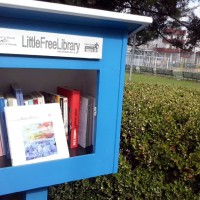 mini-biblioteche-puglia