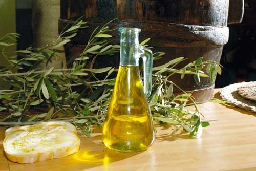 La Puglia traina la produzione italiana di olio