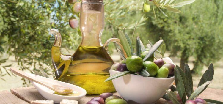 Olio extravergine biologico: caratteristiche e proprietà nutrizionali