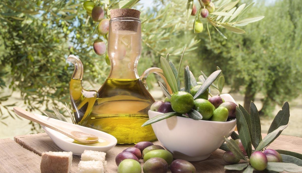 olio-pugliese-oliva