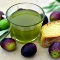 olio pugliese, come si riconosce un olio buono - Laterradipuglia
