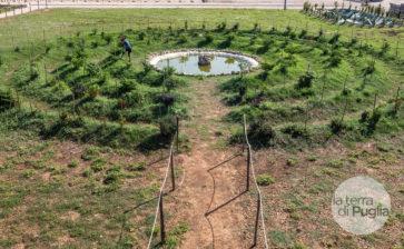 Alla scoperta dell'orto sinergico presso iContadini, Ugento