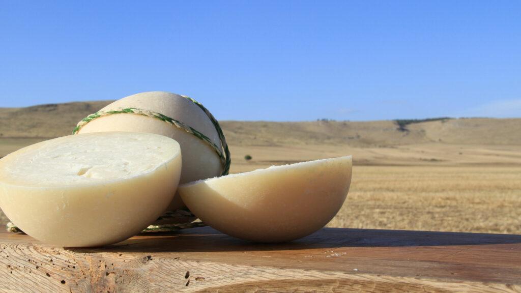 pallone di gravina - La Terra Di Puglia