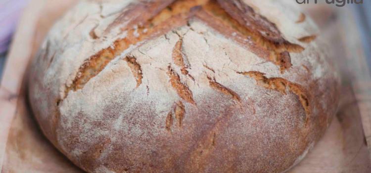 Ad Andria tutti possono cuocere il pane nel forno