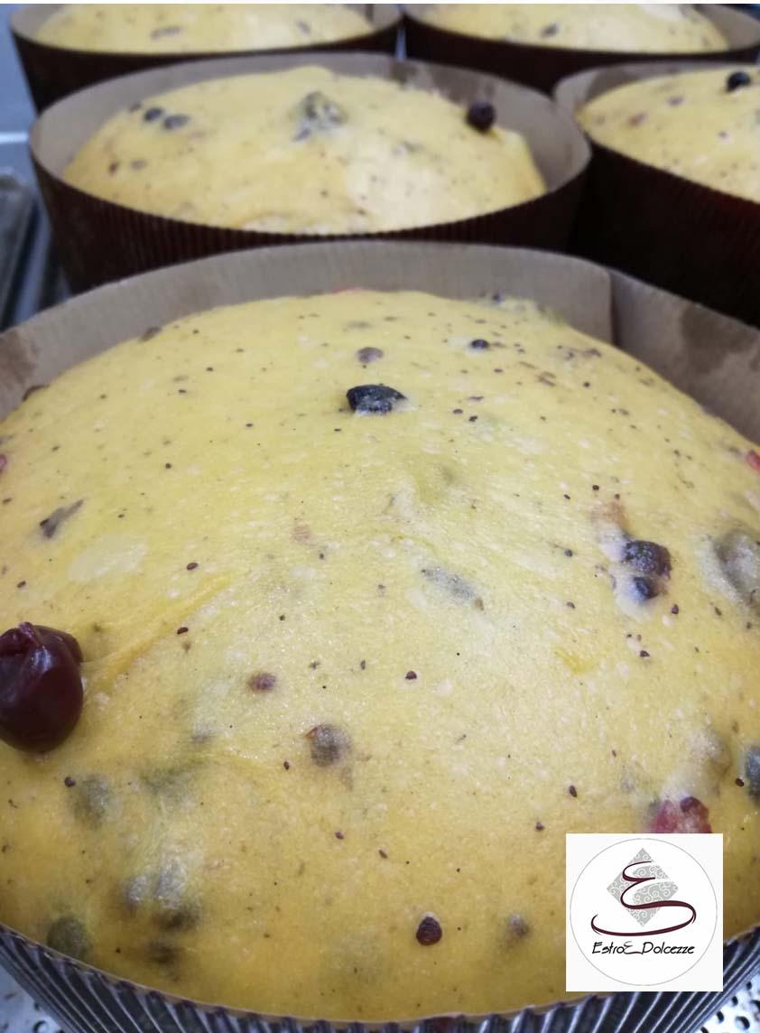 pasticceria di tricase – La Terra di Puglia