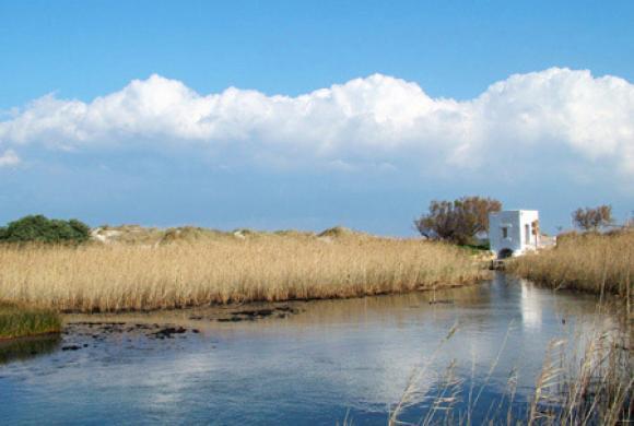 parco-naturale-regionale-delle-dune-costiere