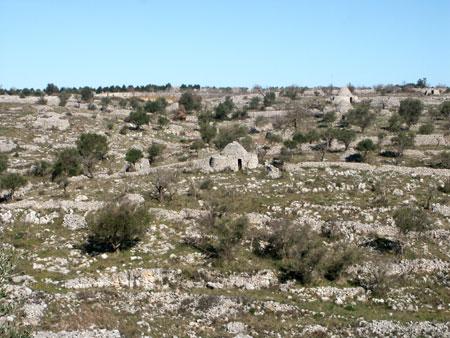 La Puglia ha un piano per il Parco dell'Alta Murgia