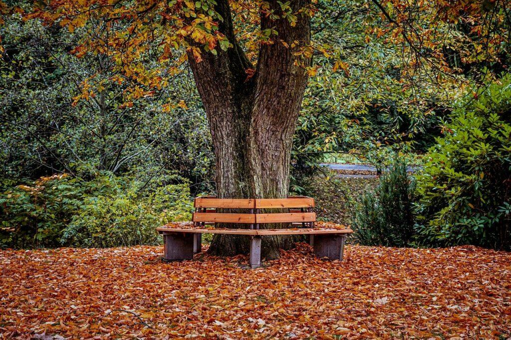 autunno - Laterradipuglia.it